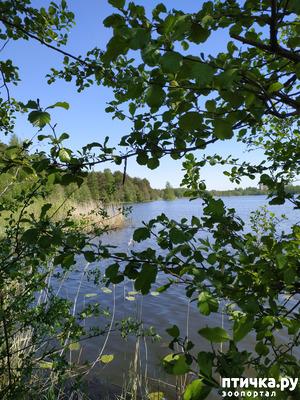 фото: Озеро