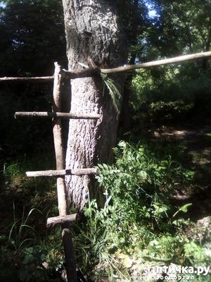 фото: Наносооружение для какадушника