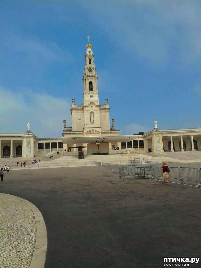 фото 2: Португалия. Фатима.