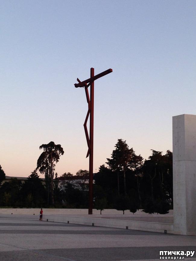 фото 4: Португалия. Фатима.
