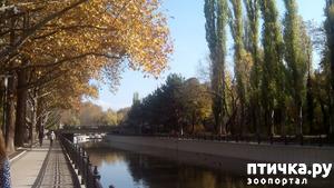 фото: Теплая осень