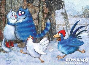 фото: Мир синих котов Ирины Зенюк.
