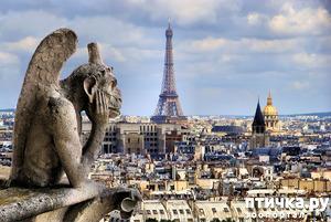 фото: Немного Франции