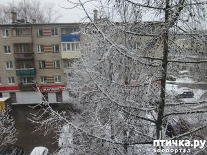 фото: У природы нет плохой погоды