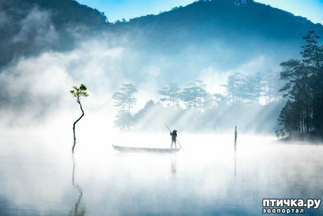 фото 4: 13 фото с конкурса Landscape-2019
