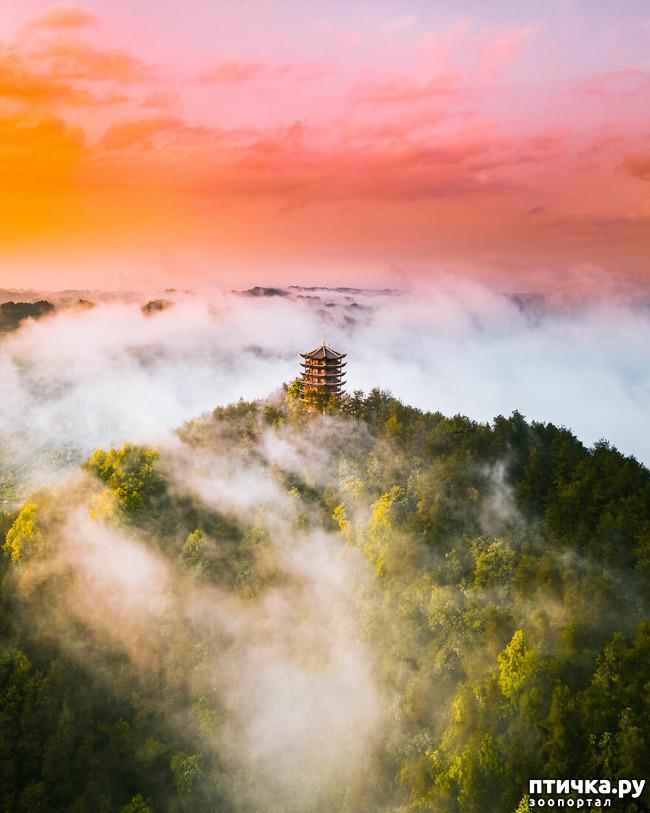 фото 5: 13 фото с конкурса Landscape-2019