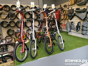 фото: Велопрогулка. С Востока на восток!