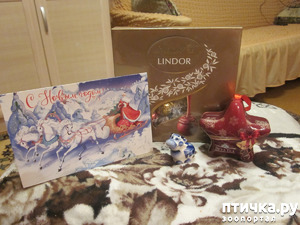 фото: И ко мне пришел Дед Мороз!