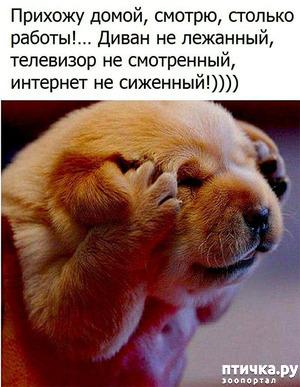 фото: Улыбнитесь, друзья!