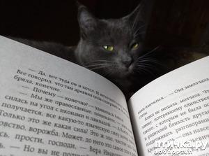 фото: Сказка на ночь