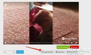 фото: Как вставить любой ролик с ВидеоРеки