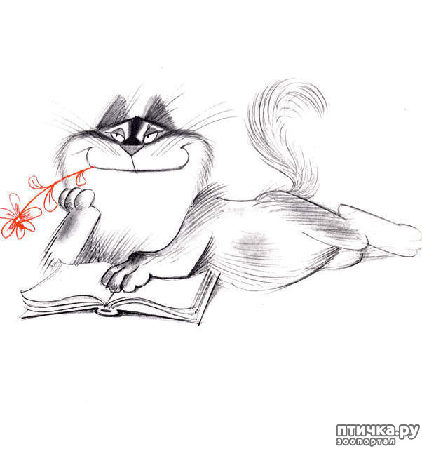 фото 5: Внимание, обнаружен новый котохудожник!