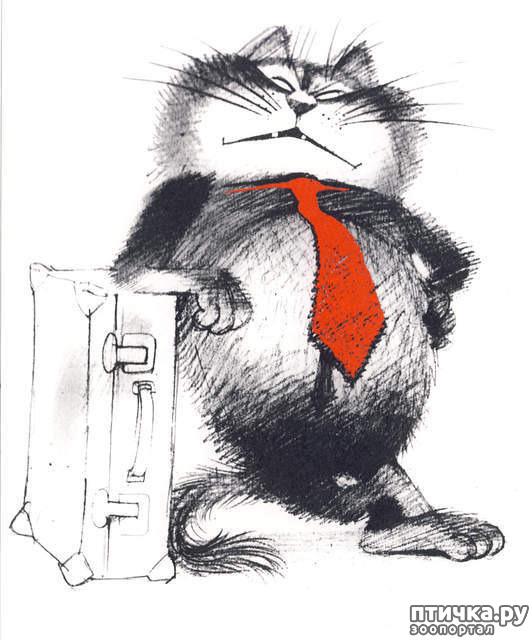 фото 8: Внимание, обнаружен новый котохудожник!
