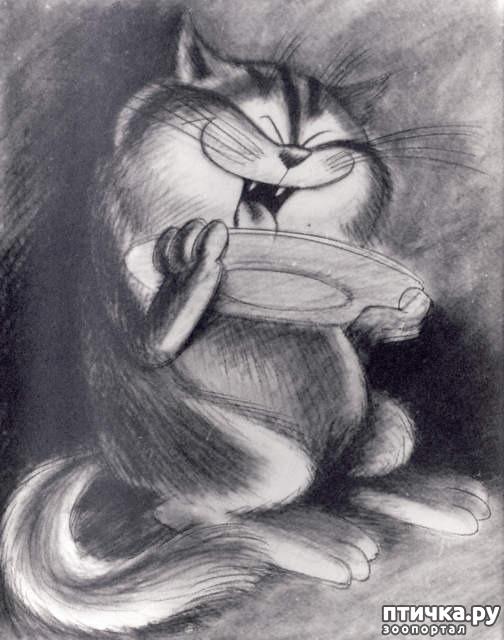 фото 11: Внимание, обнаружен новый котохудожник!