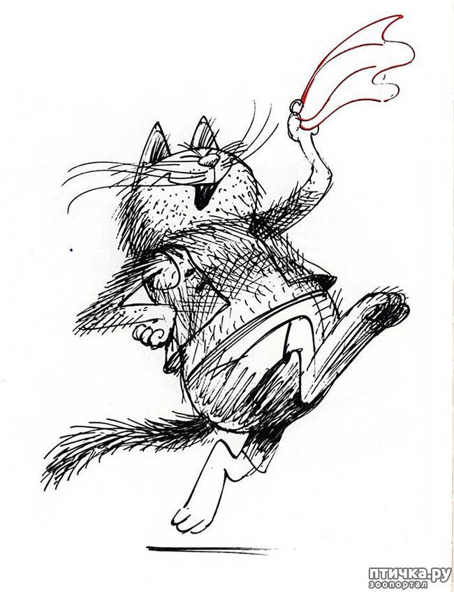 фото 20: Внимание, обнаружен новый котохудожник!