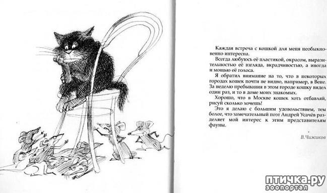 фото 23: Внимание, обнаружен новый котохудожник!