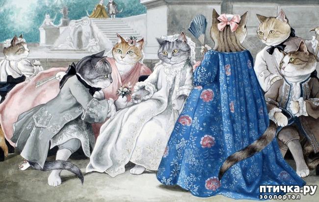 фото 1: Кошачье царство (греческая народная сказка)