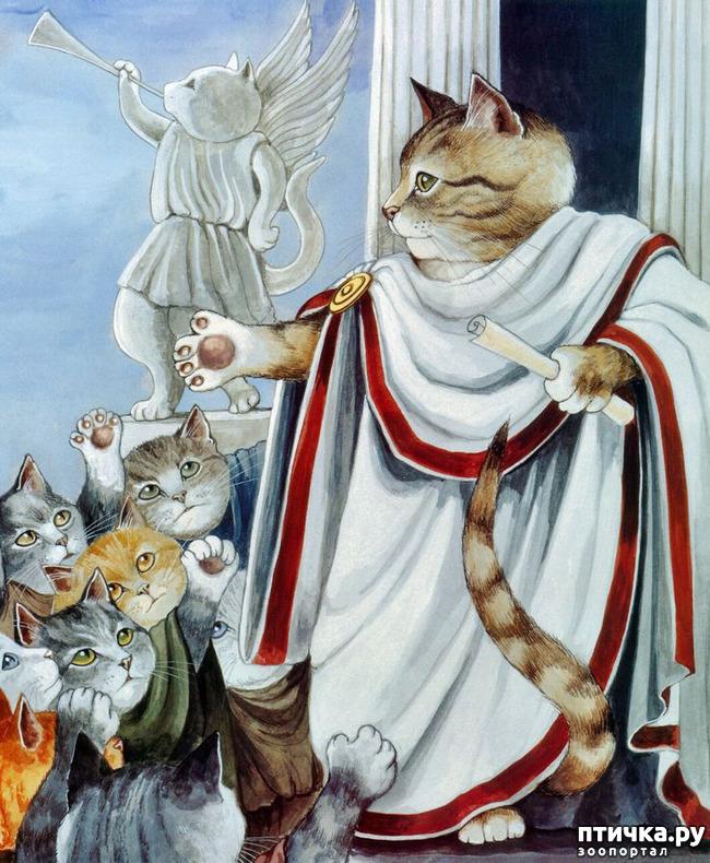фото 4: Кошачье царство (греческая народная сказка)