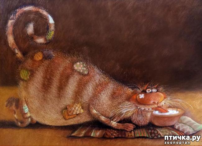 фото 3: Коты Валерия Хлебникова