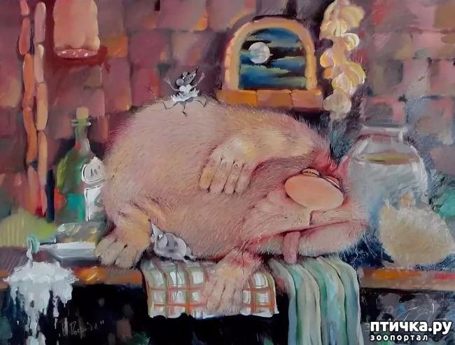 фото 8: Коты Валерия Хлебникова
