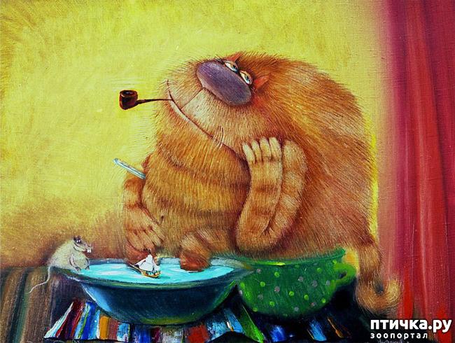 фото 9: Коты Валерия Хлебникова