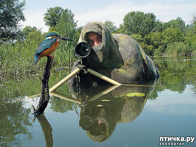 фото 6: Два фотографа! Совсем другое дело!