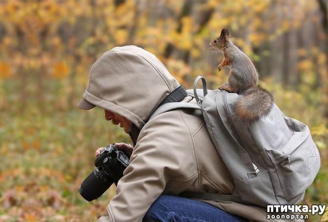 фото 9: Два фотографа! Совсем другое дело!