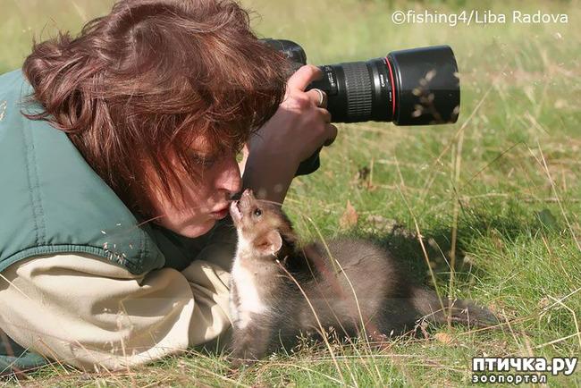 фото 12: Два фотографа! Совсем другое дело!