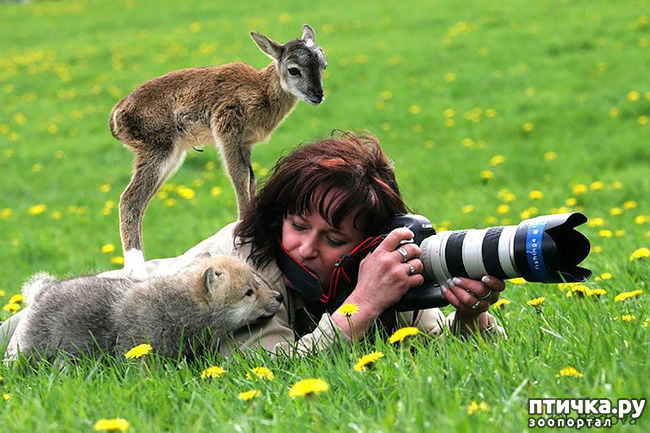 фото 20: Два фотографа! Совсем другое дело!