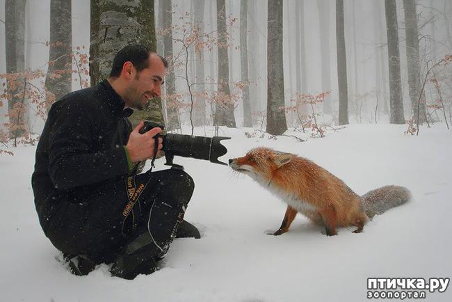 фото 27: Два фотографа! Совсем другое дело!