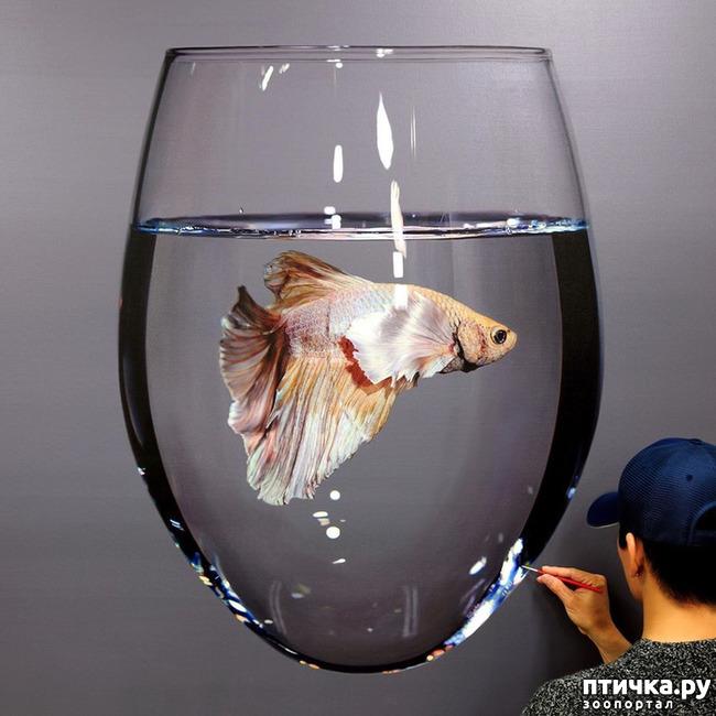 фото 1: Гиперреалистичные картины южнокорейского художника Ёнг-Сунг Кима