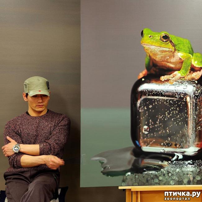 фото 3: Гиперреалистичные картины южнокорейского художника Ёнг-Сунг Кима