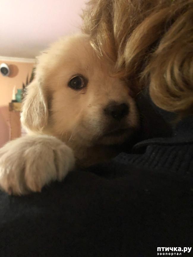 фото 2: Приветики от малышни Моники.
