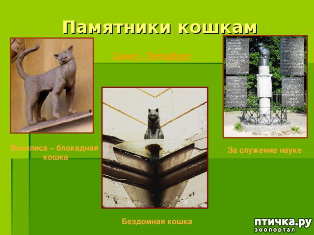 фото 12: Коты в блокадном Ленинграде