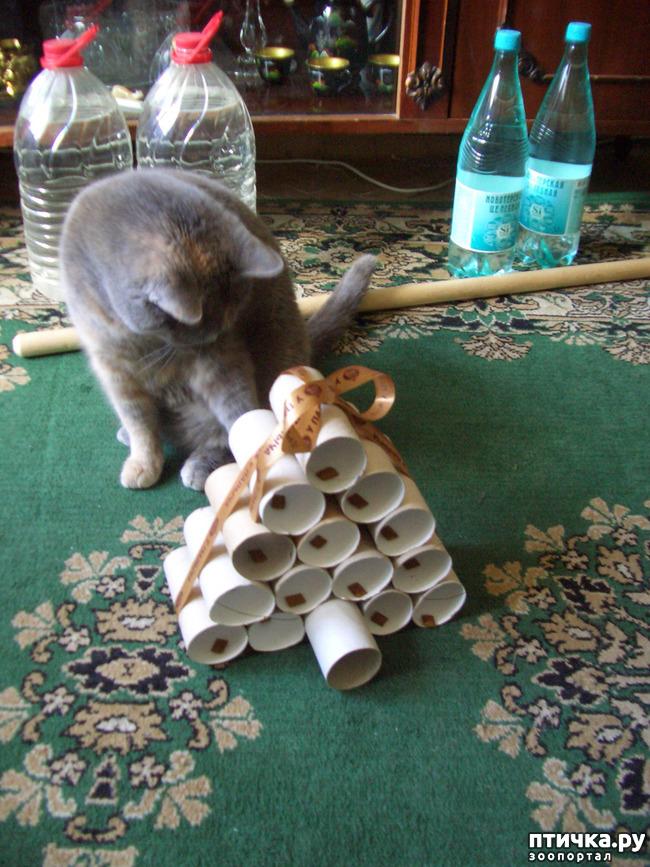 фото 2: Игрушка для Муры