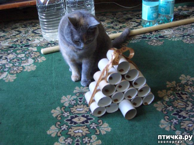 фото 3: Игрушка для Муры