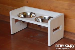 фото: Нужны ли собакам подставки под миску?