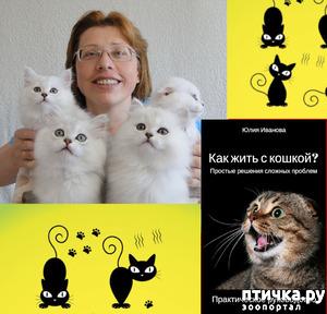 фото: Зоопсихолог