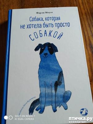 """фото: Фарли Моуэт """"Собака, которая не хотела быть просто собакой"""""""