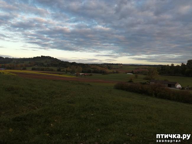 фото 2: А теперь гуляем по полям и холмам)))
