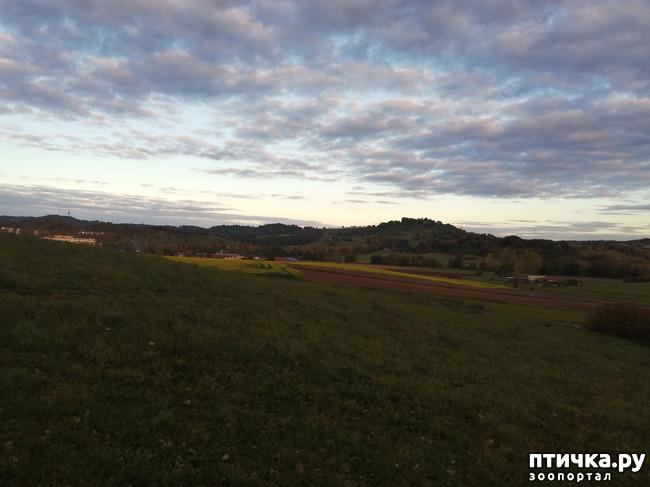 фото 3: А теперь гуляем по полям и холмам)))