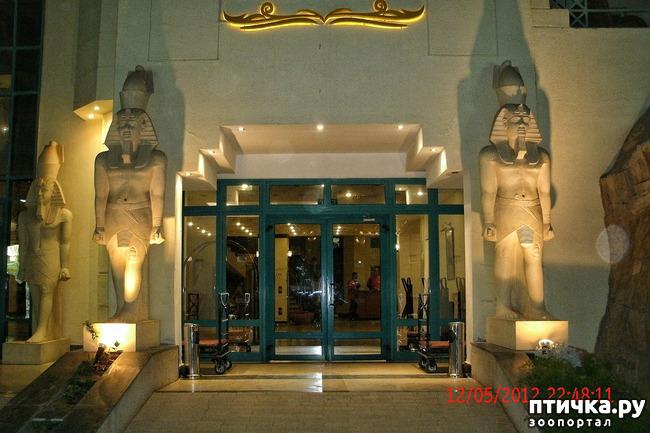 фото 41: Египет. Знакомство.