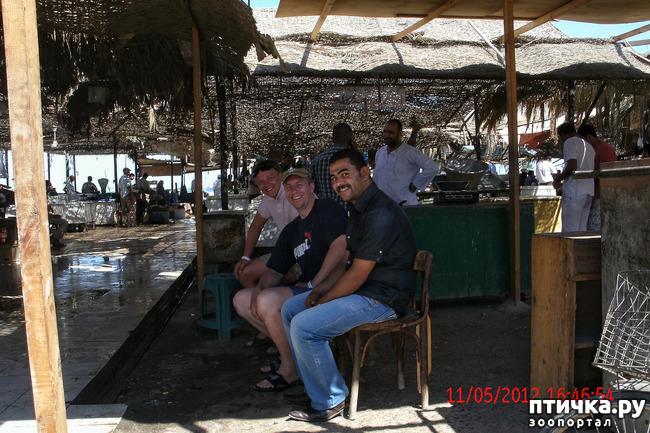 фото 5: Египет. Знакомство.