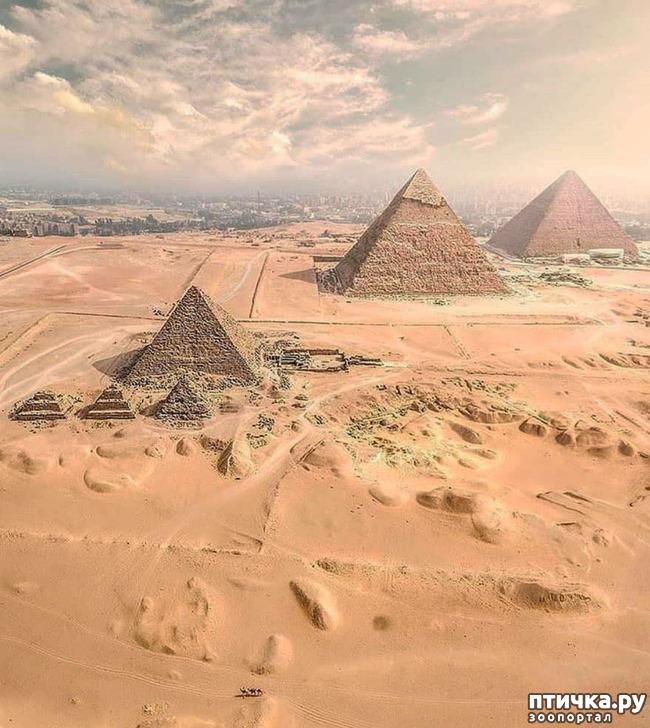 фото 1: Египет. Знакомство.