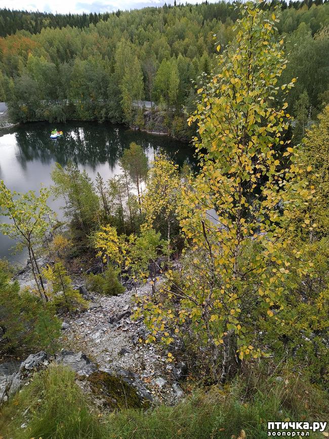 фото 3: Рускеала - горный парк