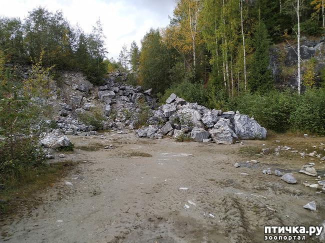 фото 24: Рускеала - горный парк