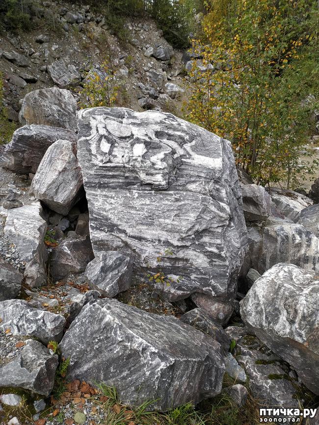фото 26: Рускеала - горный парк