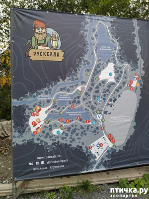 фото: Рускеала - горный парк