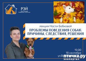 фото: «Проблемы поведения собак: причины, следствия, решения» — лекция Насти Бобковой 18 сентября!