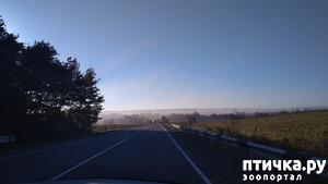 фото: Еще Гуамка, теперь осенью (Снова много фото)